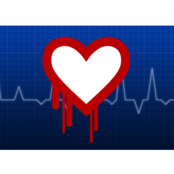 Heartbleed – what you need to know
